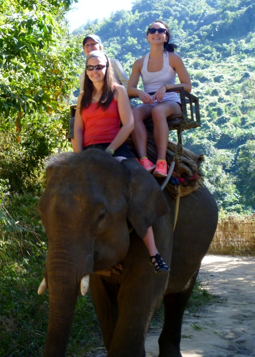 I wish I brought my elephant chaps.
