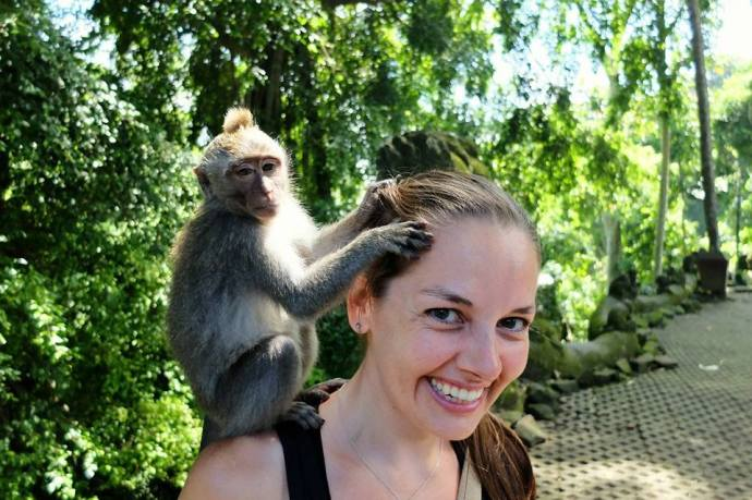 Monkey time in Bali