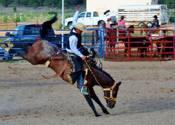 Rodeo in Utah.  Yee Haw.